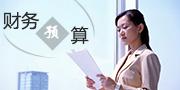 李欣财务预算培训课程