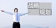 《中国企业战略突围》